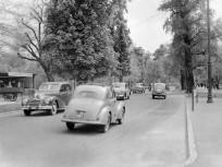1955, Margitsziget, 13. kerület
