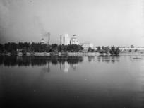 1955, a nagytétényi disznóhízlalda, 22. kerület